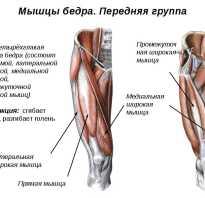 Растяжение двуглавой мышцы бедра