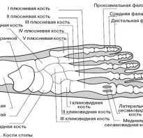 Сломан мизинец на ноге лечение