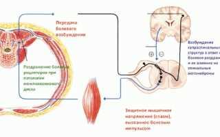 Препараты расслабляющие мышцы спины