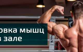 Упражнения для спины в спортзале