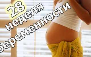 Болит спина 28 недель беременности