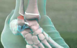 Латеральная связка голеностопного сустава